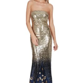 Goddiva Gradiated Sequin Maxi Dress